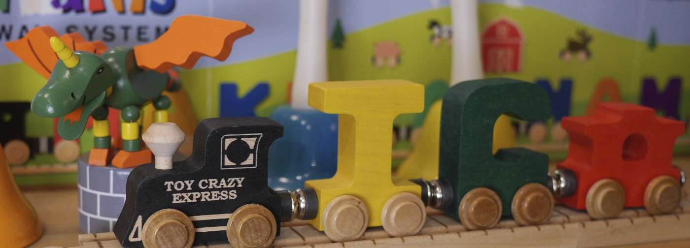 Toy Crazy Express
